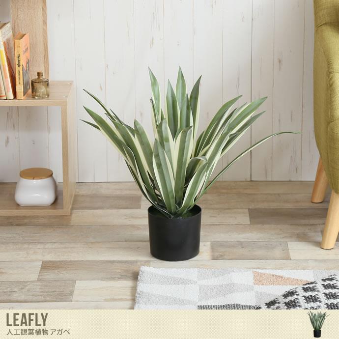 お手入れ要らずで気軽にお部屋を彩るフェイクグリーン/色・タイプ:グリーン Leafly 人工植物 アガベ