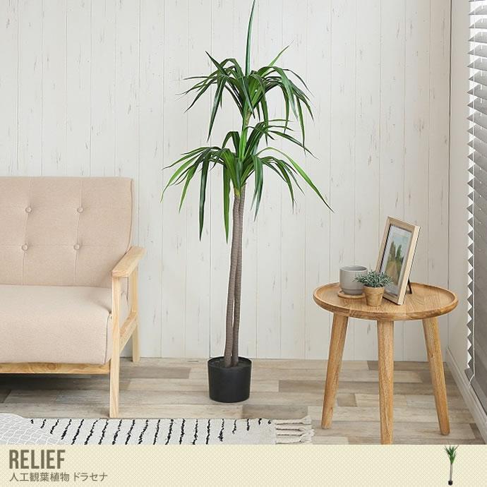 お手入れ要らずで爽やかなフェイクグリーン/色・タイプ:グリーン Lelief 人工植物 ドラセナ