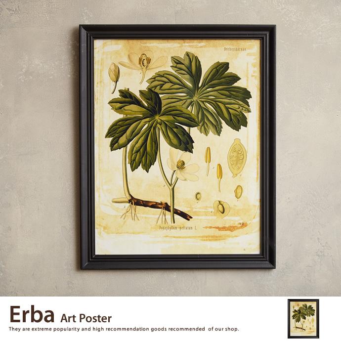 【アートポスター】Erba Art Poster アートポスター ポスター ウッドフレーム 壁掛け 床置き 額付き 北欧 インテリア>インテリア小物