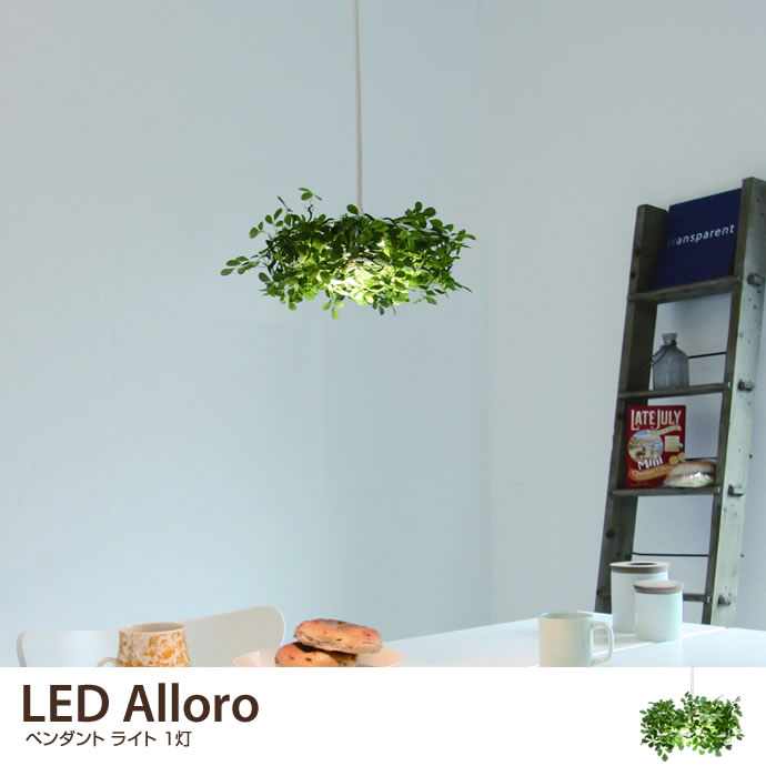 LED Alloro
