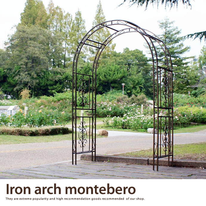 Iron arch motebero