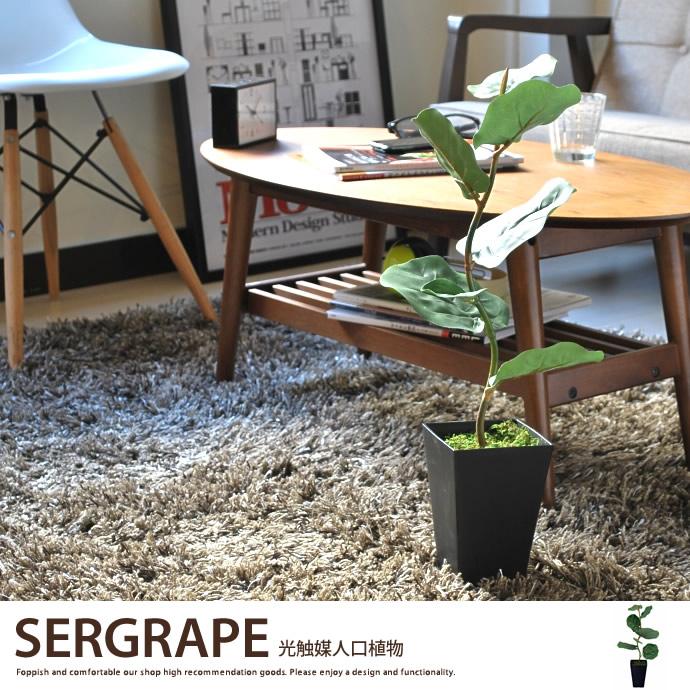 【シーグレープ.観葉植物 造花 人工植物 抗菌 タバコ 観葉植物