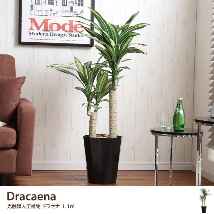 送料無料!【観葉植物】【高さ1.1m】Dracaena 光触媒人工植物 ドラセナ 【高さ1.1m】 Dracaena ドラセナ 人工植物 観葉植物 光触媒 水やり不要 お手入れ不要 グリーン リアル 観葉植物 グリーン